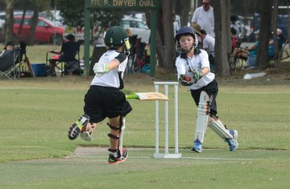 primary cricket